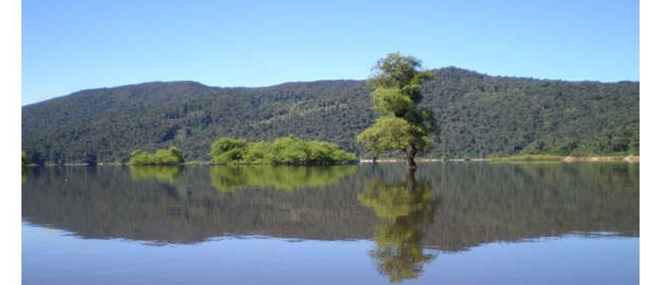 Préservons l'environnement, source de vie